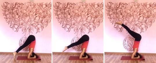 Intensivo IYENGAR® Yoga 17-21 agosto