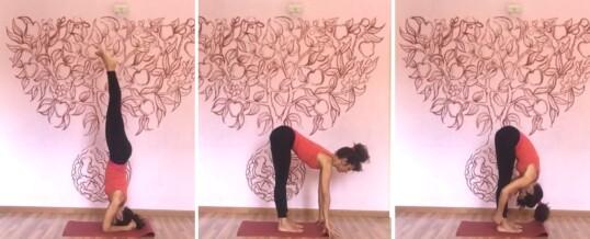 Intensivo IYENGAR® Yoga 24-30 agosto