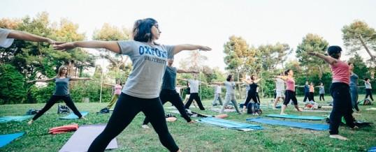 ESTATE 2021 : Corso di IYENGAR® Yoga al Parco